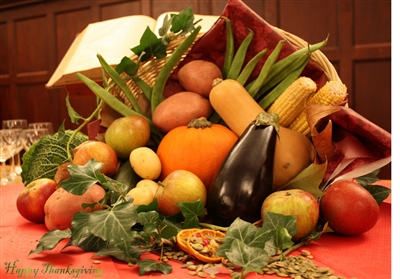 Harvest display with Bible