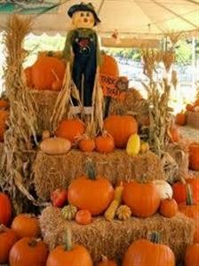 Scarecrow atop a pile of pumpkins at Poinciana UMC, Miami Springs
