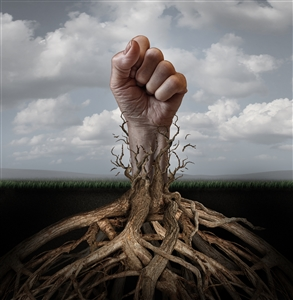 Photo illustration of a fist breaking through entangling tree roots